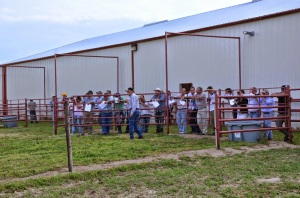 Viewing and learning about Bill Rishel's Angus program